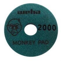 monkey 2000