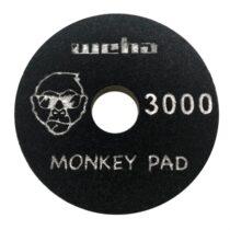 monkey 3000